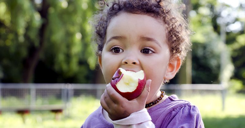 Harmful pesticides are commonly detected on fruits, vegetables eaten by children.