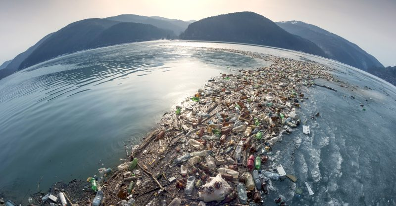 Single-use plastics is set to grow 30% in the next five years.