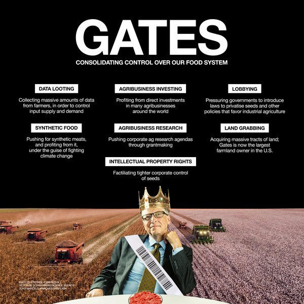 BILL_GATES_GRAIN_INFOGRAPHIC.jpeg