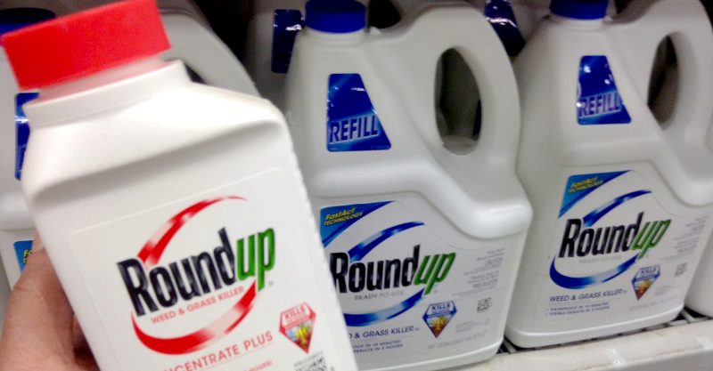 After purchasing Roundup-maker Monsanto in 2018, Bayer has been mired in a deluge of court battles.