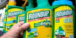 Monsanto spent decades hiding the risks of Roundup