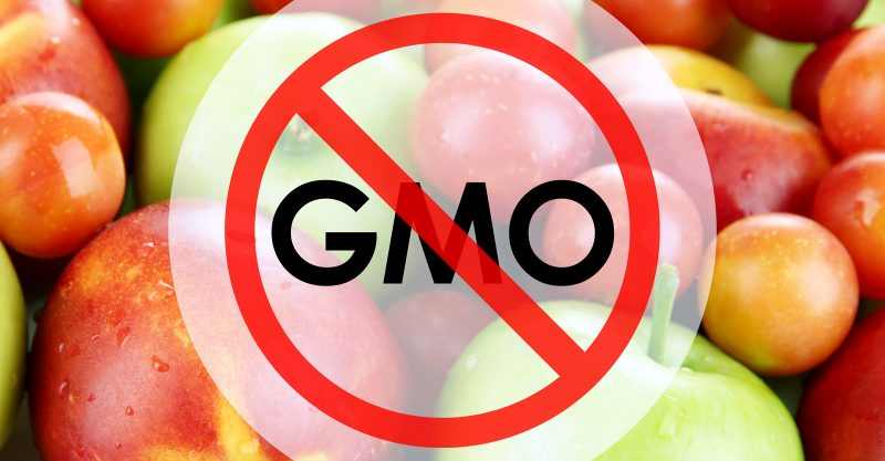 Leaders of the upcoming UN Food Systems Summit are ignoring human rights and pushing to expand genetic engineering.