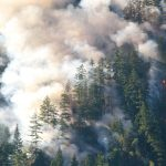 Last year, Colorado alone saw its three largest fires in recorded state history.