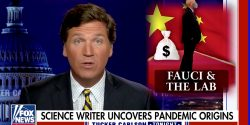Fox News commentator Tucker Carlson took aim at two (in his words) 'political operatives.'