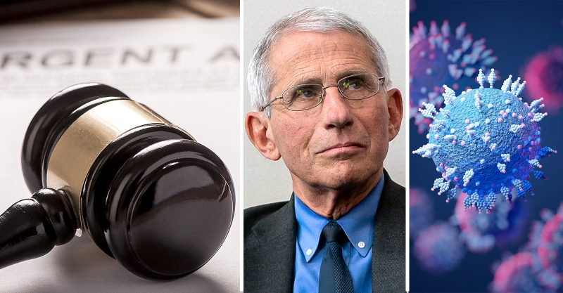 Dr. Anthony Fauci lied to Congress about funding 'gain-of function' research in China.