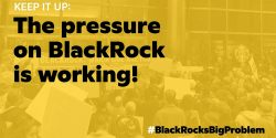'At the moment, BlackRock is a major part of the problem.'