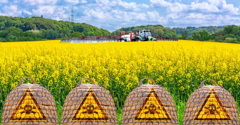 Glyphosate is now showing up in humans, but scientists are still debating its health effects.