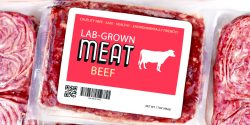 Underneath the greenwashed façade, lab-grown meat has been hyped beyond reality and its promises are slated to fall flat.