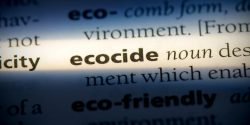 A panel of international lawyers published an official legal definition of the term 'ecocide.'