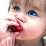Alimentos favoritos para niños contaminados con neonicos
