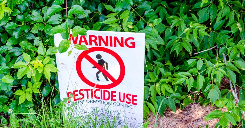 Chlorpyrifos is an organophosphate insecticide that has been linked to a range of health ailments.