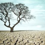 Growing concerns: many regions of the world will face water crises